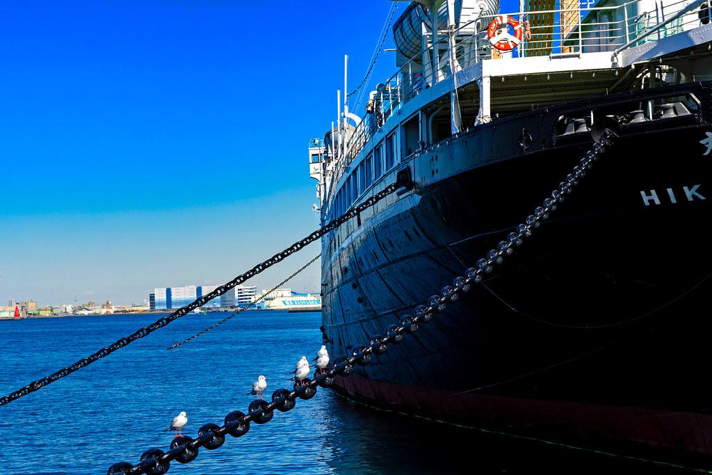 NYK Hikawamaru : 日本郵船氷川丸