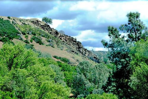 acdseeultimate california earth ecosystem farmfield field flora landscapes may naturalhabitatadventures naturalworld nature nikond700 northamerica photogeorge photoshoot spring catheysvalley unitedstatesofamerica us