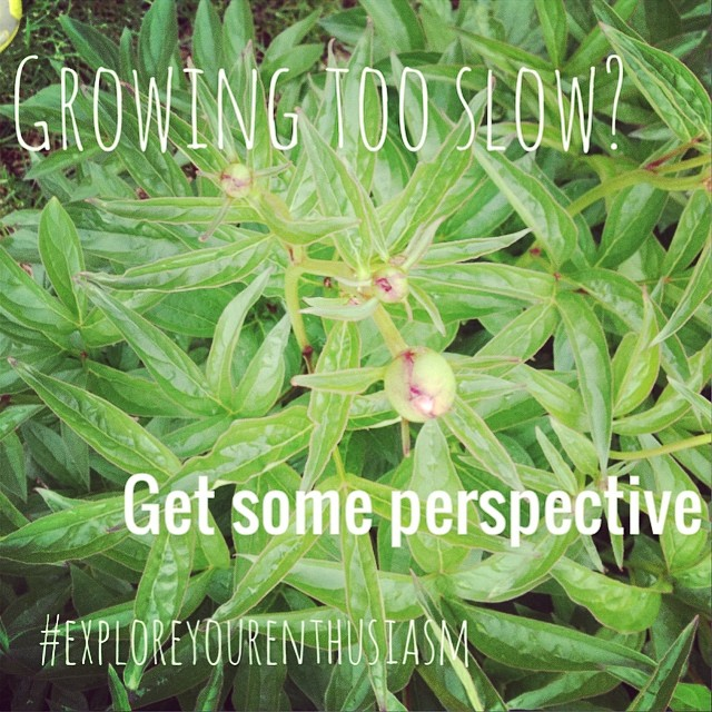 "How to get perspective when you're frustrated by slow growth...or just not being where you ""should"" be. Podcast on TaraSwiger.com 