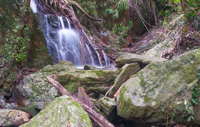 a70-aaforest waterfall