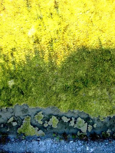 de nouvelles photos aériennes des marais salants de Guérande 14444379856_676b834b95