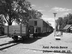 Vegyesvonat Kastély állomáson, 2014. 06. 15. (3)