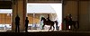 Arabian Horse Show added as a favorite.