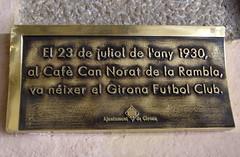 Photo of Bronze plaque № 31117