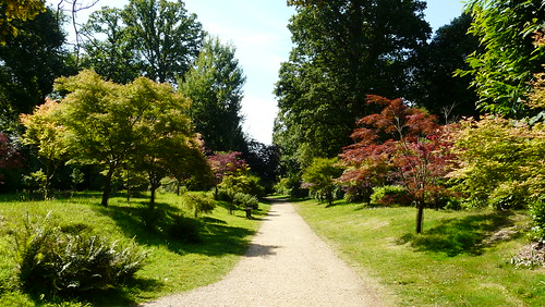 Kingston Lacy Gardens