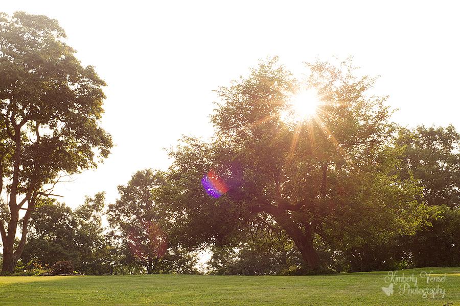 August 1: Landscape