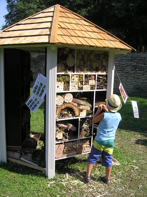 Bee hotel in Sagadi Manor
