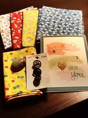 My fantastic fat quarters from 30's swap, along with great gifts from Colleen Butler.  She even sent me a Petoskey Stone that her husband collects and polishes.   I love presents!!