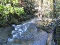 2014-08-10 Lilydale Falls 108 - Second River above upper falls