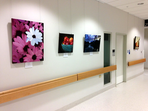NSA exhibition at Royal North Shore Hospital