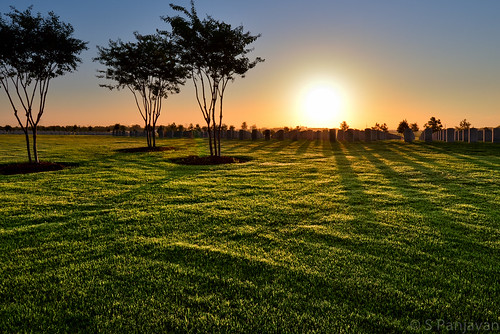 morning trees shadow sky sun monument grass sunrise lawn headstones graves unknownsoldiers