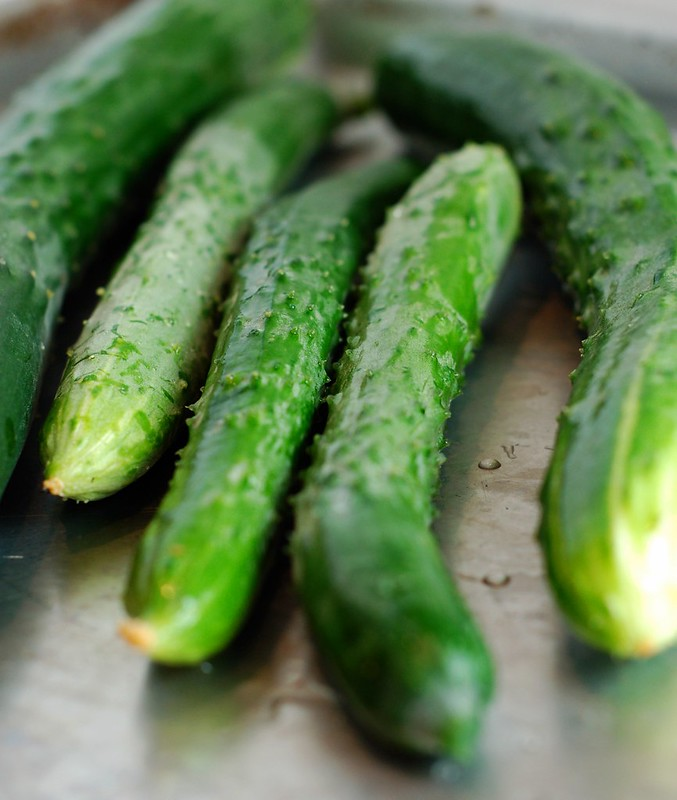 Cucumbers from the garden by Eve Fox, the Garden of Eating, copyright 2014