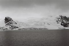 Antarctica Lost Film (20)
