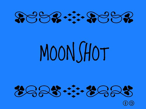 Buzzword Bingo: Moonshot