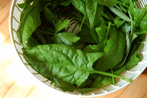 Garden spinach by Eve Fox, the Garden of Eating, copyright 2014