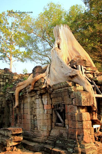 Siem Reap Cambodia Preah Khan Temple