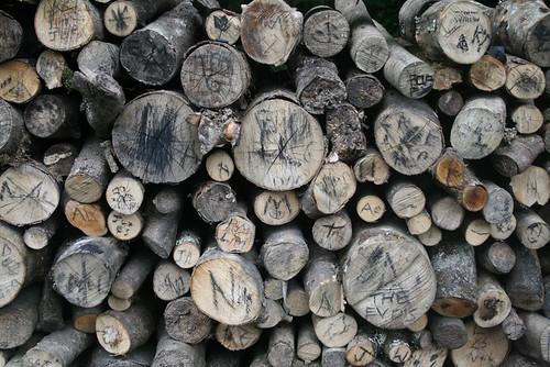 logs in Heligan
