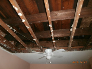 Ceiling exposing the mold in the room - Newtown PA