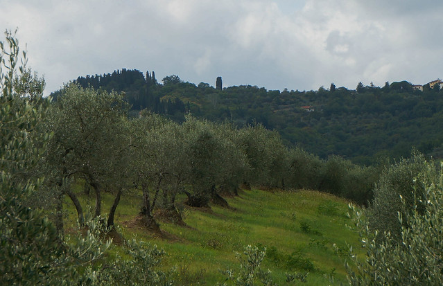 Italy-38.jpg