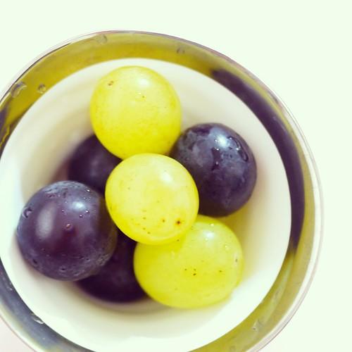 巨峰、翠峰。甘くて美味しいー! #むつみ山口農園 #松戸 #ぶどう #dessert #fruits