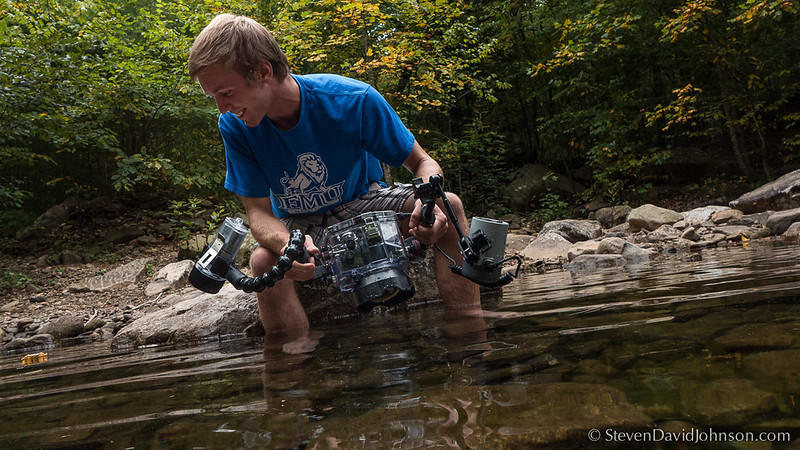 EMU Conservation Photography students practice underwater techniques