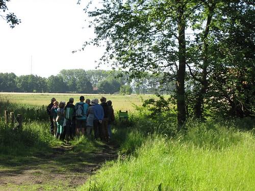 wandelen in de Molenbeekvallei