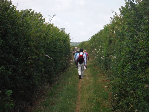 Following the Chiltern way