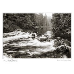 Beaver River, Feversham Gorge