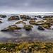 Water, rocks and seaweed by NettyA