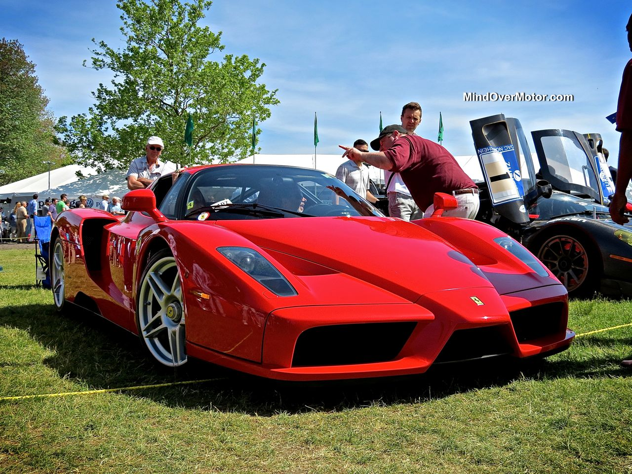 Ferrari Enzo at the Greenwich Concours d'Elegance