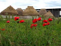 Stonehenge Visitor Centre, Neolithic Houses
