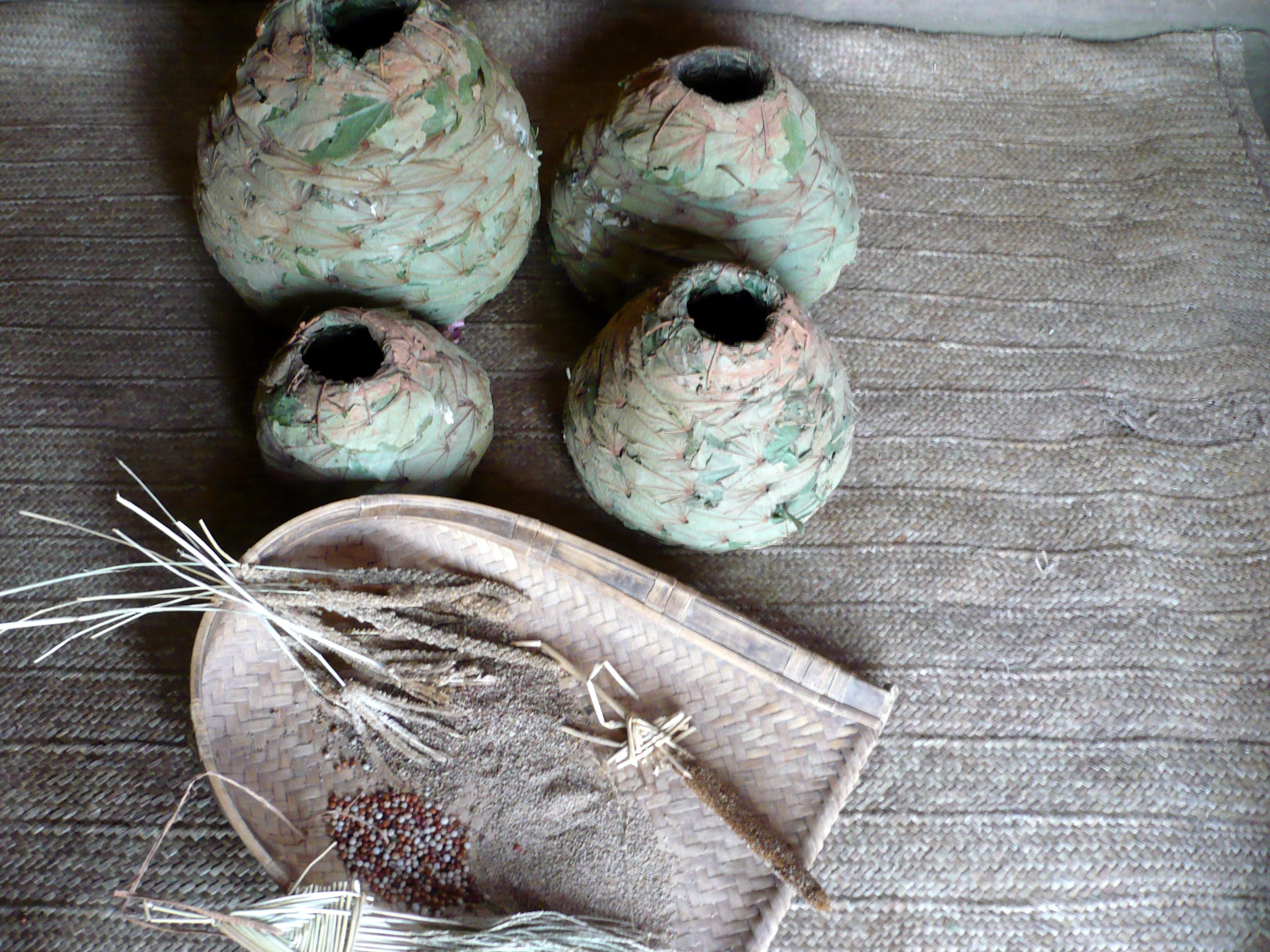 कोरवा आदिवासी की बेंवर खेती