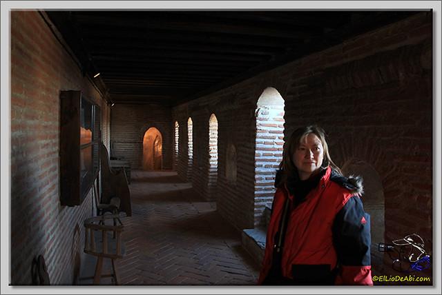 Castillo de Coca (Segovia) (9)