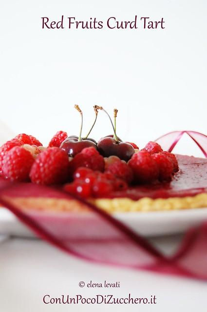 Red fruits curd tart 1