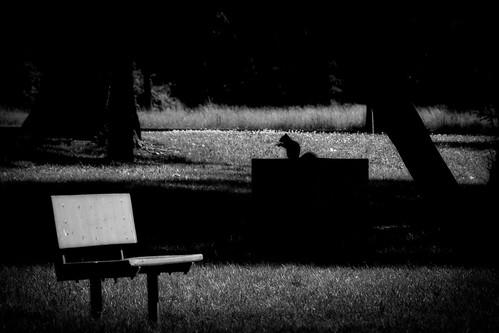 bw bench hbm benchmonday