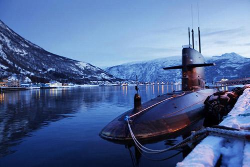 dolfijn-cold-respons-2010-door noorse marine