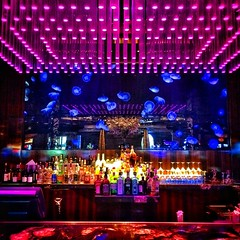 Cocktails with the jellyfish at @atlantisresort #vacation #atlantisresort #atlantis #bar #jellyfish #bahamas
