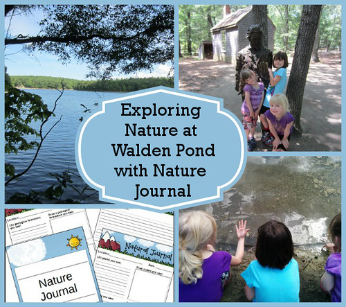 Exploring Nature at Walden Pond with Nature Journal (Photo from 3 Dinosaurs)