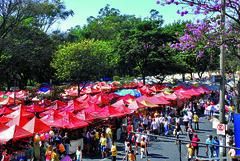 03/07/2014 - DOM - Diário Oficial do Município
