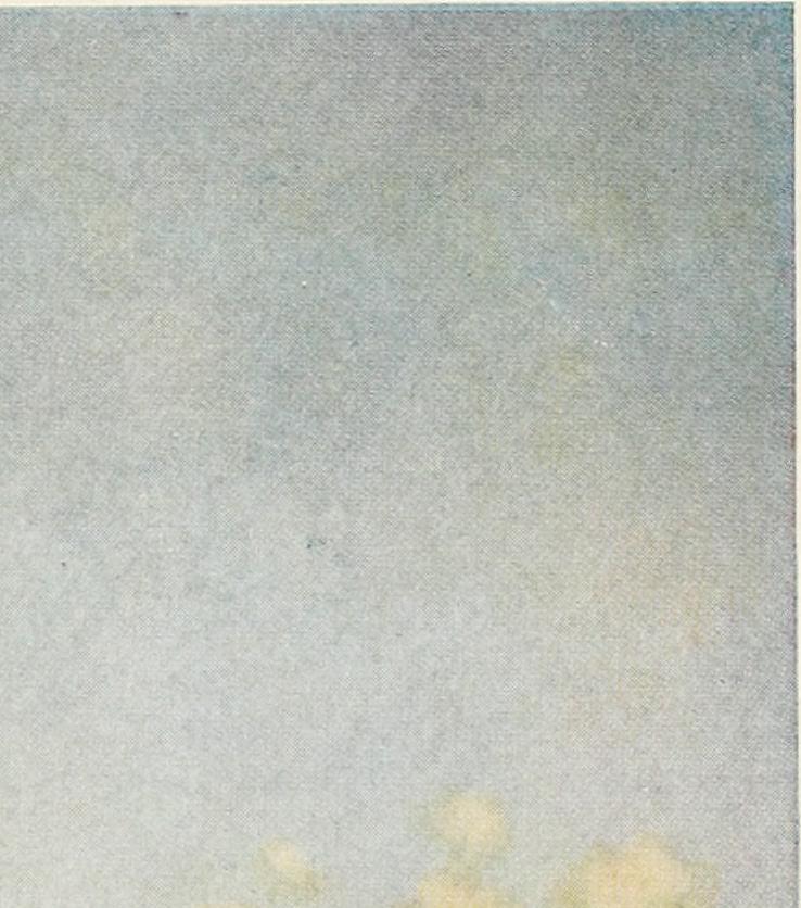golden keepa