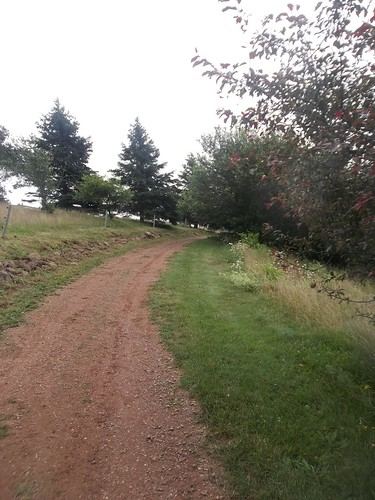 Red dirt road, Gardens of Hope, New Glasgow