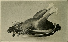 """Image from page 197 of """"Domestic science, principles and application; a text-book for public schools"""" (1914)"""