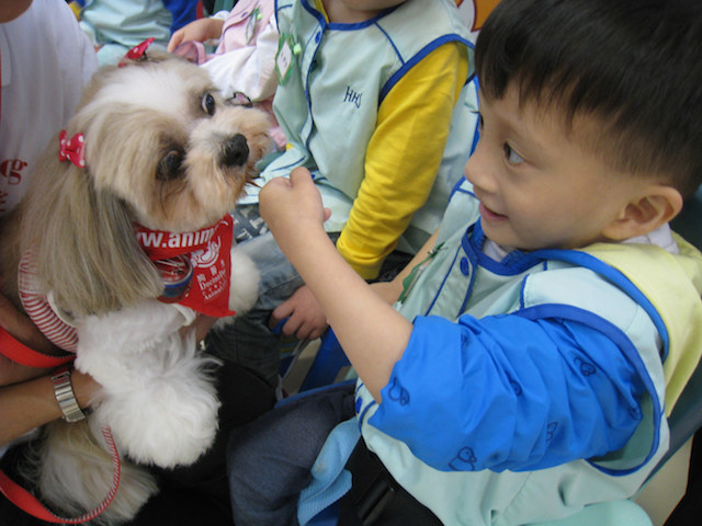 [Dr Dog program] A special need kid is earning to pet a dog