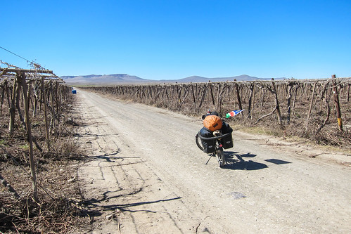 Day650-Bike-140815
