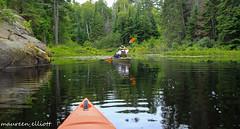Reflections and Kayaking