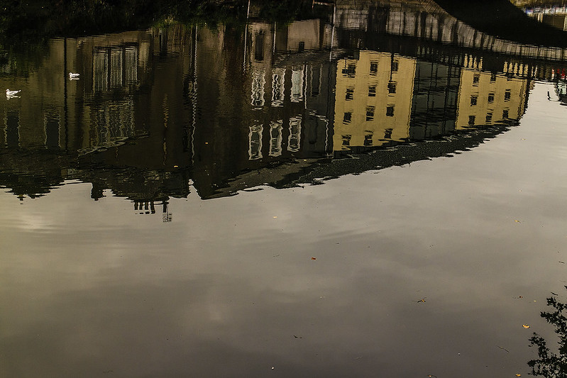 cork reflections 30