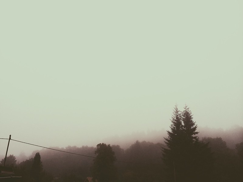 A Foggy Morning (9/5/14)