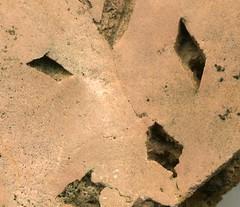 Gypsum molds in silicified metadolostone (Kona Dolomite, Paleoproterozoic, 2.2-2.3 Ga; Co. Rd. 480 roadcut, Ragged Hills, SW of Marquette, Upper Peninsula of Michigan, USA) 2