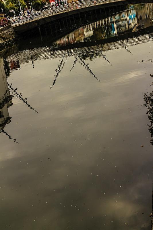 cork reflections 24
