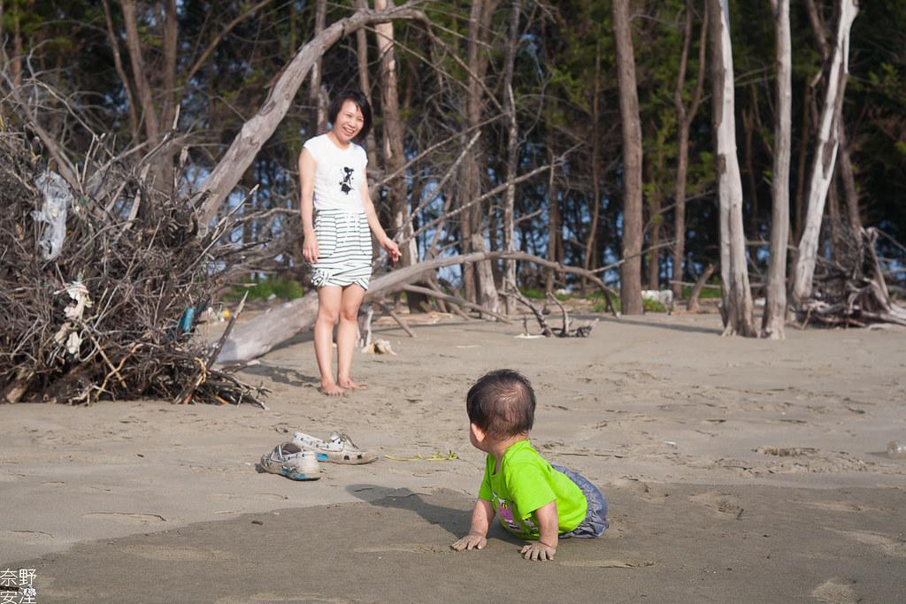 台南私藏景點-安格斯夏日寫真 (24)